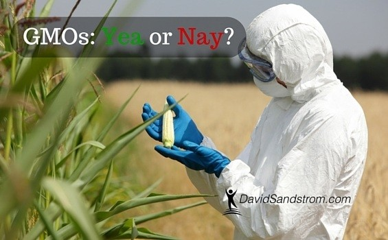 GMOs: Yea or Nay?